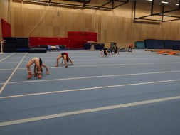 Funtastic Gymnastic Club 02